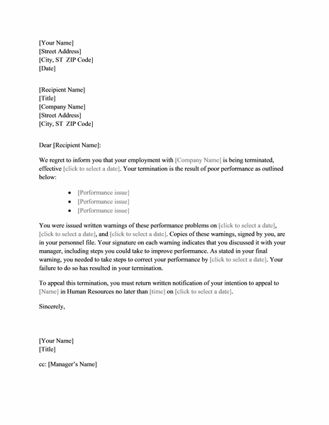Termination Letter Template Poor Performance